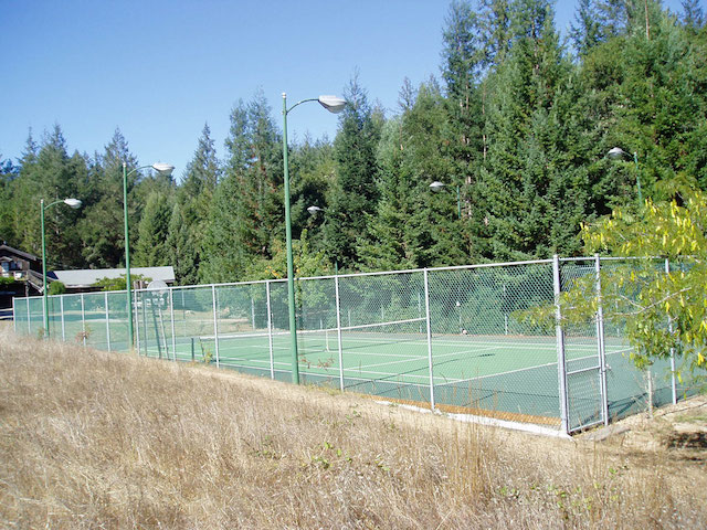 tenniscourtday